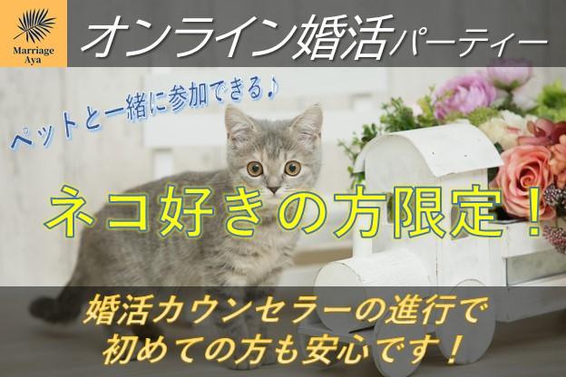 オンラインパーティー 猫好き